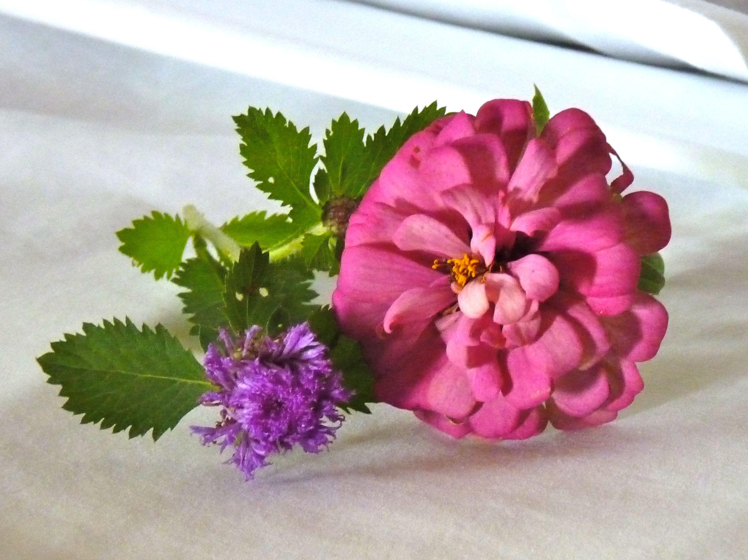 Bed flower